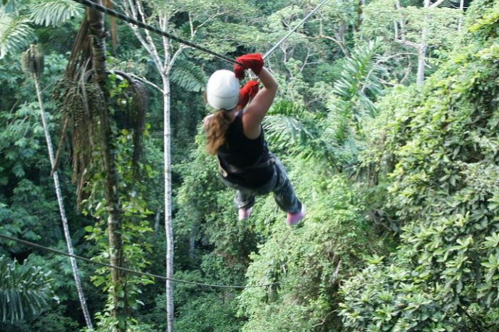 Canopy / Zip Lining Tour