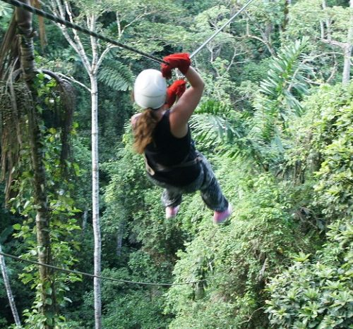 Puerto Viejo Costa Rica Local Tours - Canopy Tour