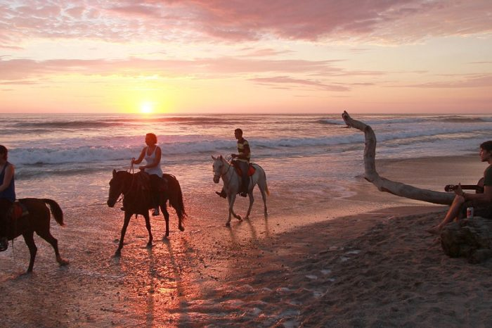 Beach and Jungle Horseback riding tour