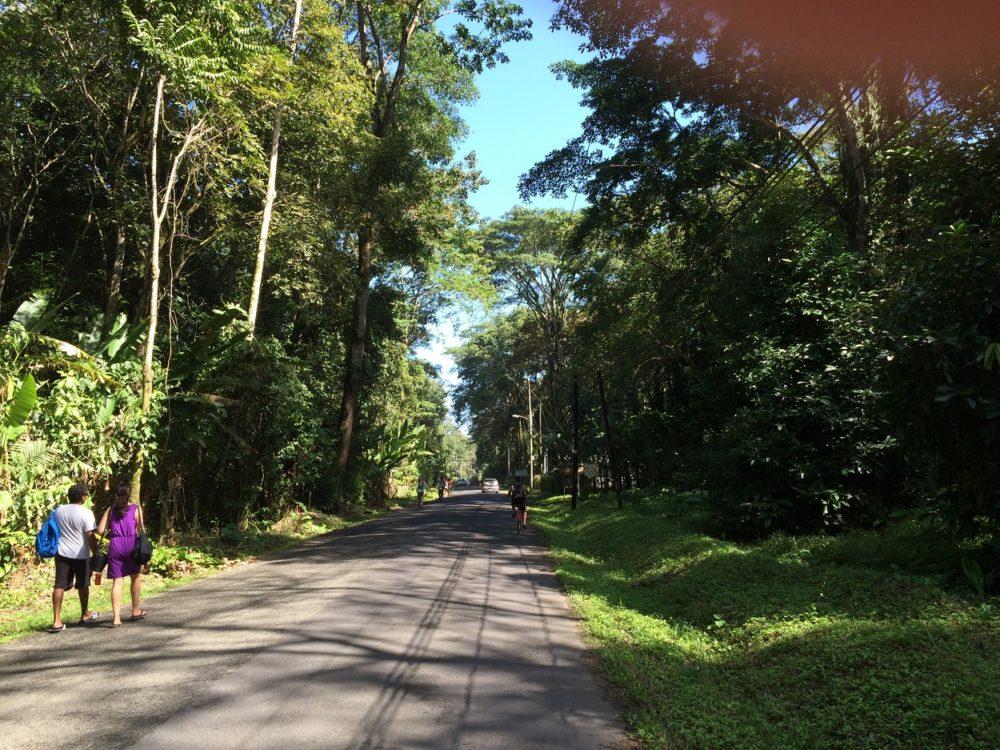 Puerto Viejo Costa Rica roads