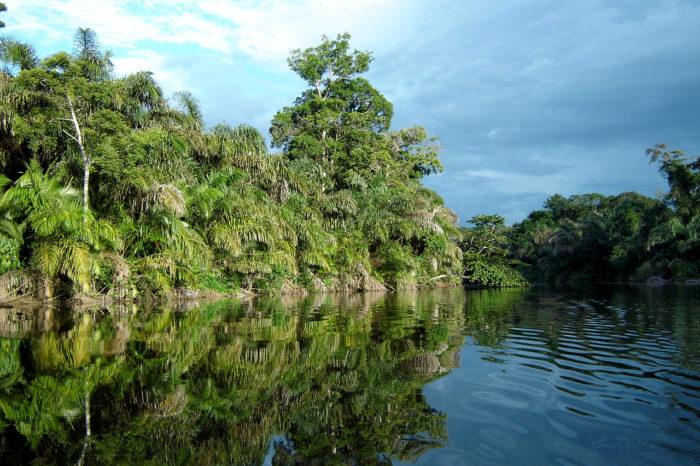 Gandoca Lagoon Boat Tour